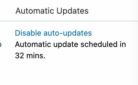 Automatic Plugin Update Schedule